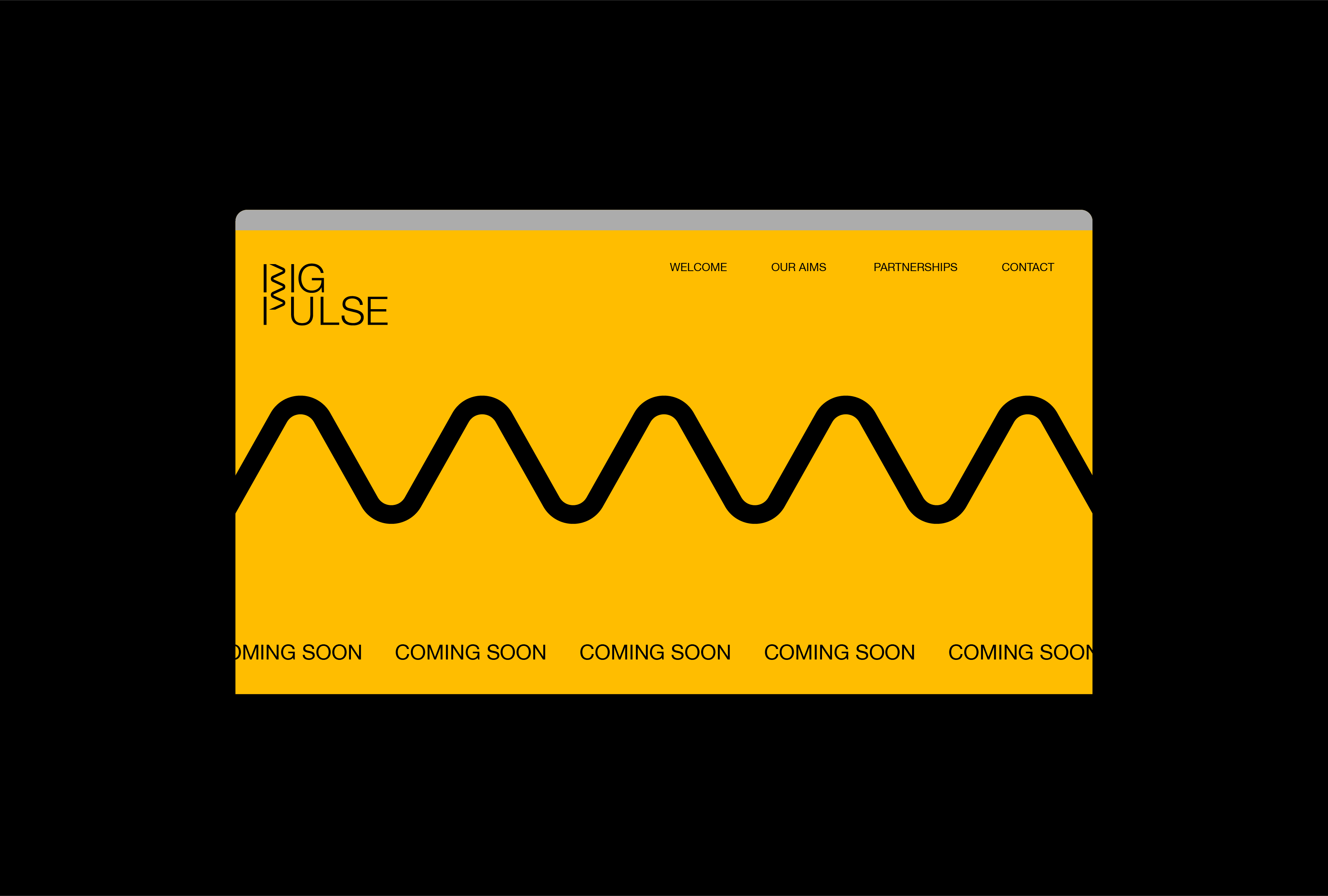 Big Pulse logo and signature line used on their website